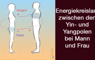 Energiekreislauf Yinpol Yangpol zwischen Mann und Frau yoYA Bianka Maria Seidl